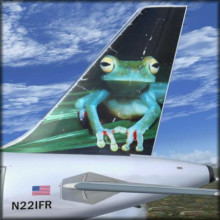 frogR2.thumb.jpg.cbb6a7b0613c6023f573d2e57b6b1a58.jpg