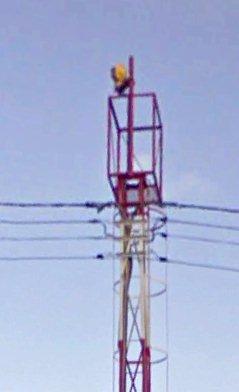 LPMA1.jpg