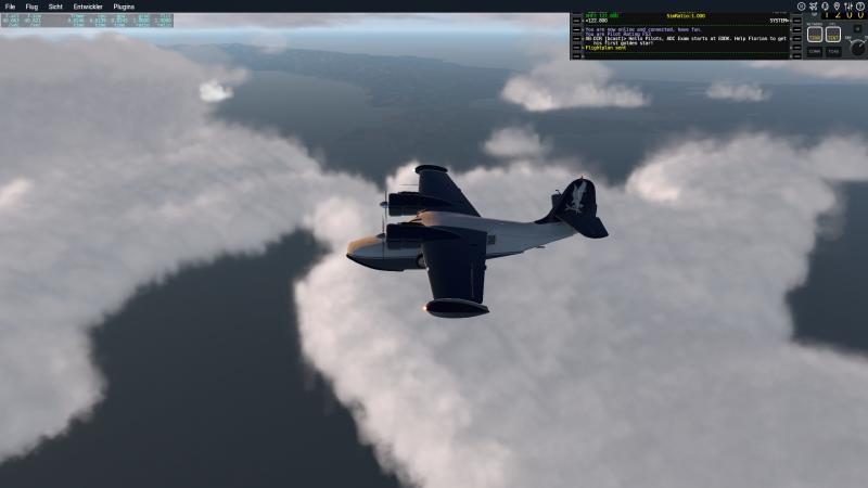 Grumman_G-21A_Goose_177.png