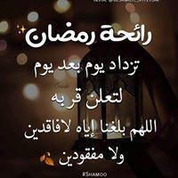 عبدالرحمن بن عثمان الأمين