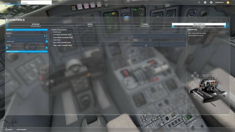 Microsoft Flight Simulator Screenshot 2021.03.16 - 23.34.13.57.png
