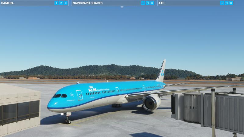 Microsoft Flight Simulator Screenshot 2021.07.10 - 17.03.41.97.png
